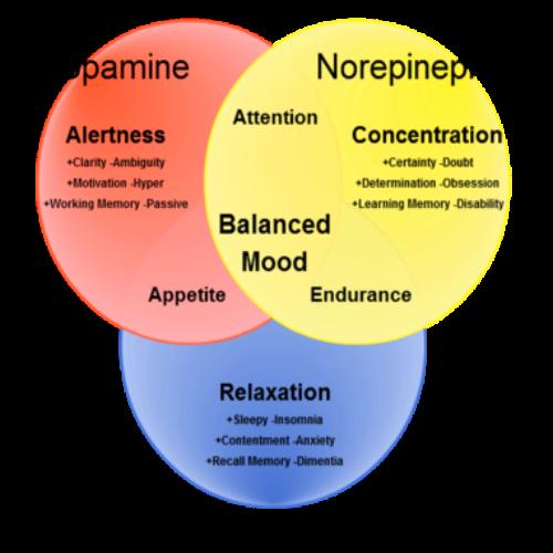 genomics, snps, serotonin, dopamine